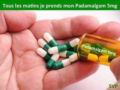 Padamalgam